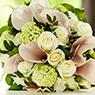 Flower Design Contest Ditelo con un fiore